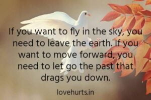 Read more about the article Letting Go Quotes – Quotes About Letting Go